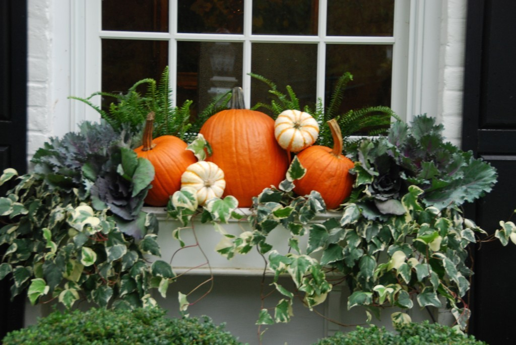 Pumpkins and ivy in gorgeous fall arrangement