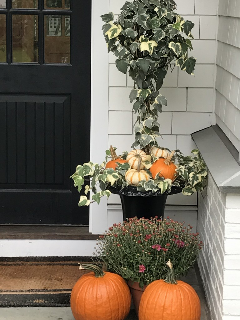 Fall window boxes with pumpkins, ivy, and ferns by Pretty Pink Tulips. CLICK OVER to say HELLO LOVELY to Pretty Pumpkin Decor and Recipes [in case you're ready to FALL in Love With Autumn].