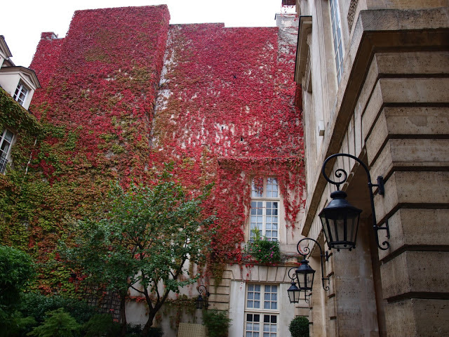 Climbing red vines on Pavillon De La Reine. Fall leaves and inspiration for savoring the season. Visit 9 Lovely Ways to Savor Autumn Beauty for more beauty from the avenues of Paris to the American prairie. #hellolovelystudio #fallinspiration #autumn #ideas