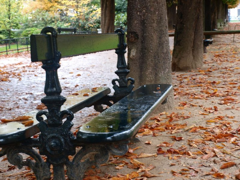 Beautiful fallen leaves and green bench in a Paris park by Hello Lovely Studio