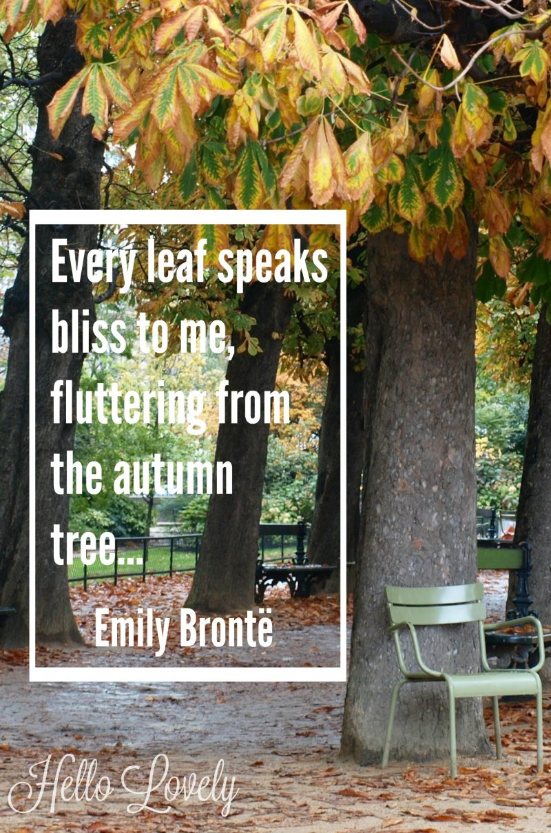 Emily Bronte quote about fall and a Paris park with fallen leaves. #hellolovelystudio #fall #paris #emilybronte #quote