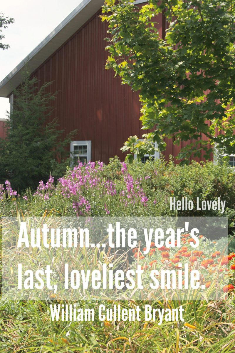 Quote about autumn and red barn by  Hello Lovely Studio