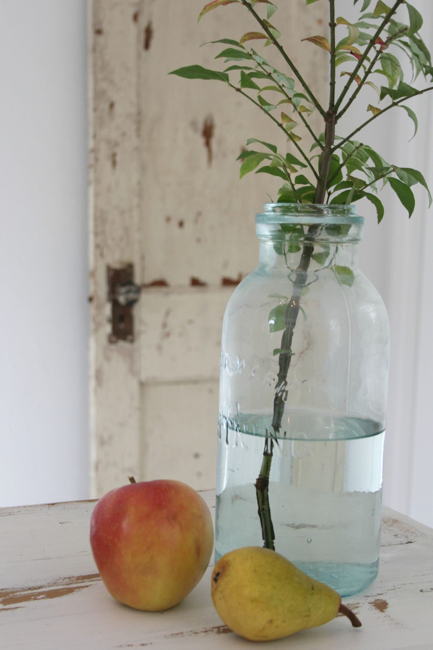 Still life with vintage door, apple, pear, and aqua bottle with branch by Hello Lovely Studio.