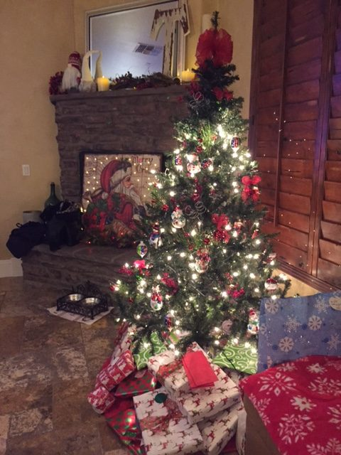My Sister's House - Christmas 2017