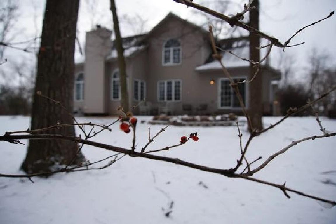 Our backyard in winter - Hello Lovely Studio. #hellolovelystudio