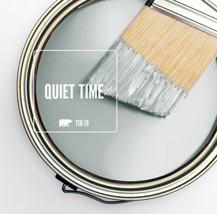 BEHR Quiet Time paint color. #paintcolors #behrquiettime #quiettime #bestlightgrey
