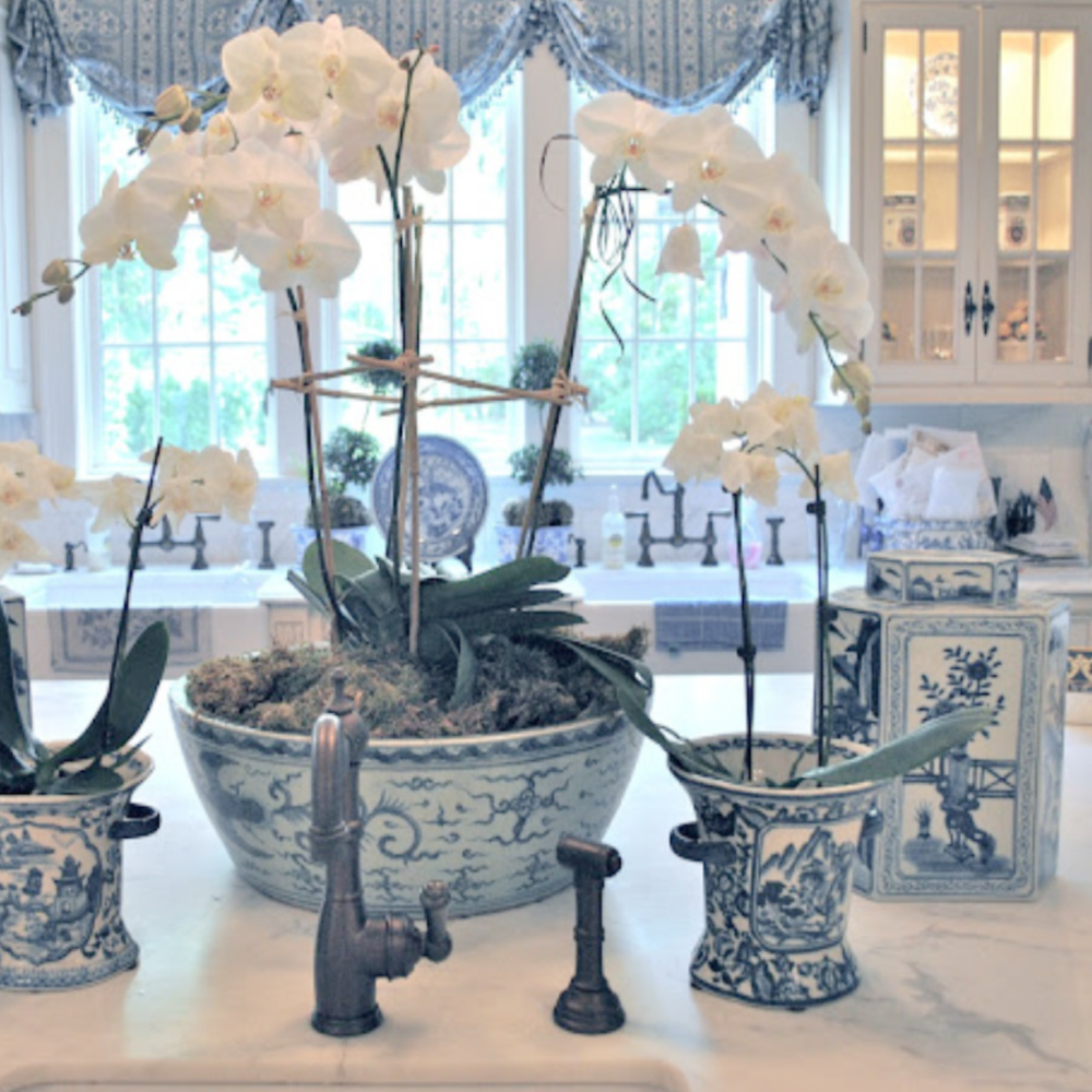 Blue and white porcelain with orchids from The Enchanted Home Shop.