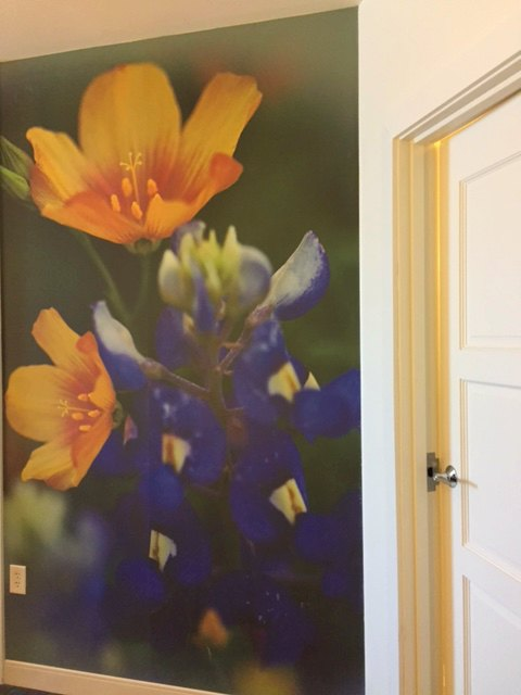 Interior of Hotel Indigo Waco room with colorful floral mural on wall near bathroom. #hotelindigo #mural #waco #photo