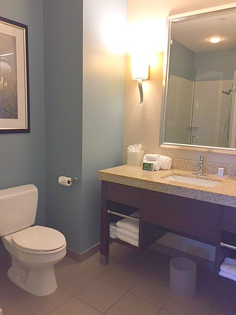 Bathroom at Hotel Indigo Waco with blue walls, granite topped vanity, and romantic wall sconce lighting. #hotelindigo #waco #bathroom #decor