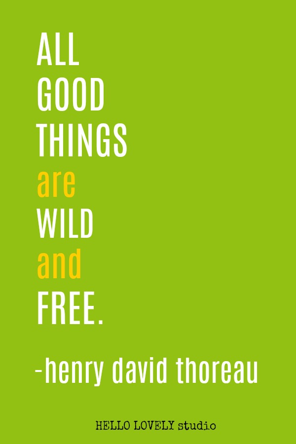 Inspirational quote by Thoreau on Hello Lovely Studio.
