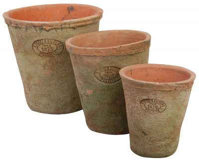 Rustic aged French country terracotta pots