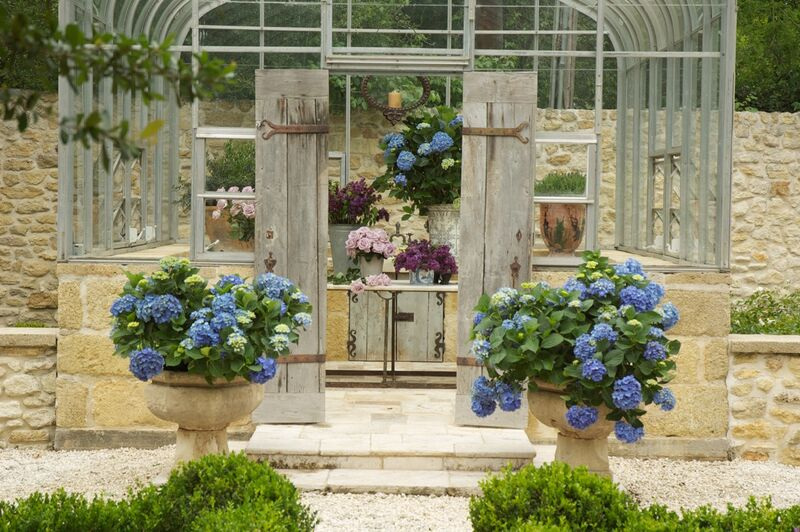 Chateau Domingue Timeless European Elegance and French farmhouse style converge in this house tour of founder Ruth Gay's home on Hello Lovely. Reclaimed stone, antique doors and mantels, and one of a kind architectural elements. #housetour #frenchcountry #frenchfarmhouse #europeanfarmhouse #chateaudomingue #rusticdecor #pamelapierce #elegantdecor #greenhouse #frenchgarden #hydrangea
