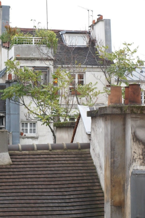 Paris rooftop with rustic country beauty and the famous Paris greys the city is so known for. Photo by Hello Lovely Studio. #hellolovelystudio #Paris #rooftop #garden #grey