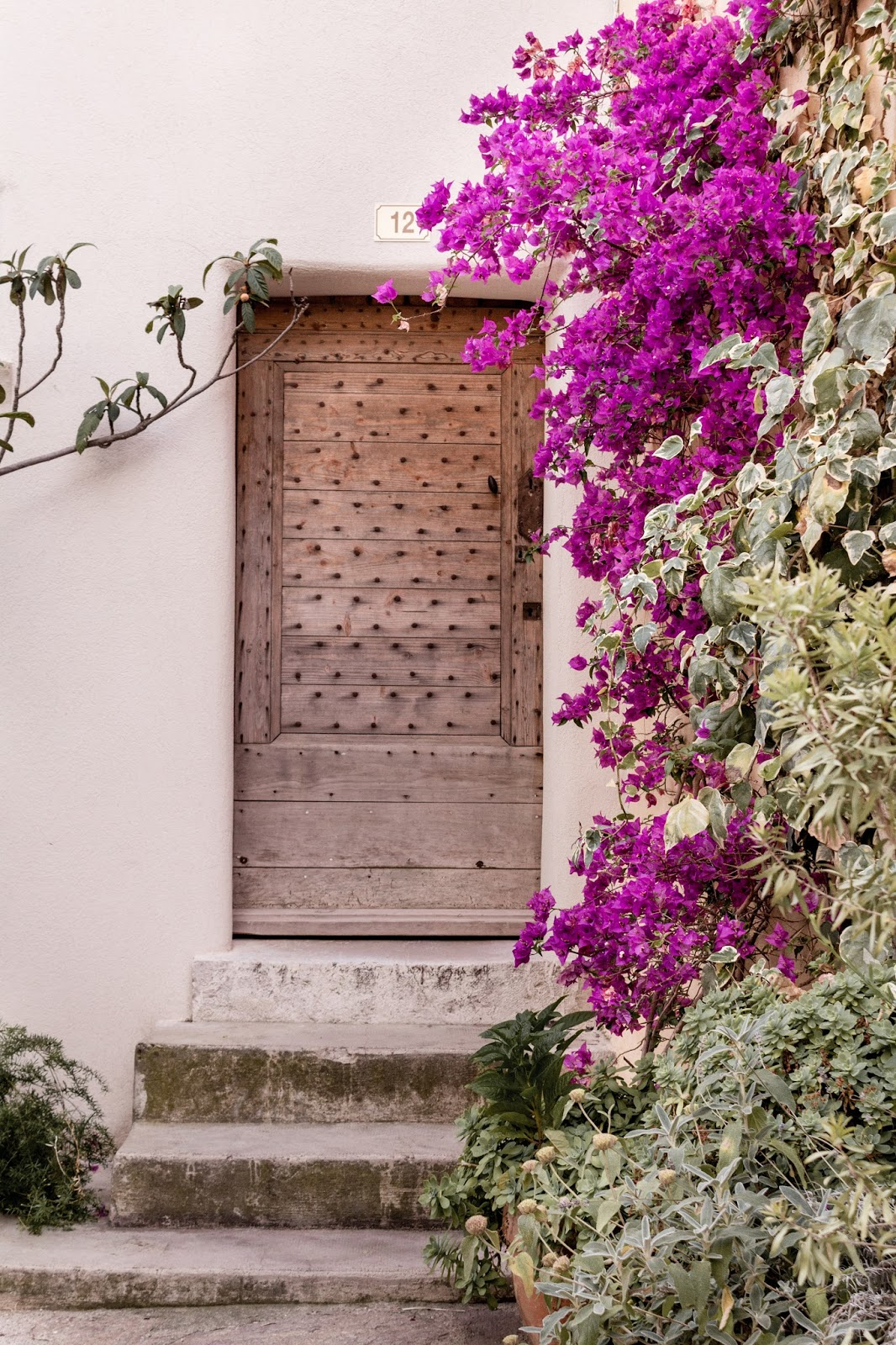 Rustic French Country Doors in Provence and gorgeous curb appeal with climbing vines, crumbling stone, and weathered age. Photo: The Flying Dutchwoman. #provence #southoffrance #exteriors #weathereddoors #rusticdoor #frenchcountryside #summerinfrance #frenchcountry #frenchfarmhouse #frontdoor #sttropez