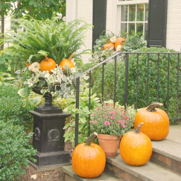 Mums, pumpkins, and an urn layered with greenery and vegetation. #falldecor #outdoordecor #frontporch