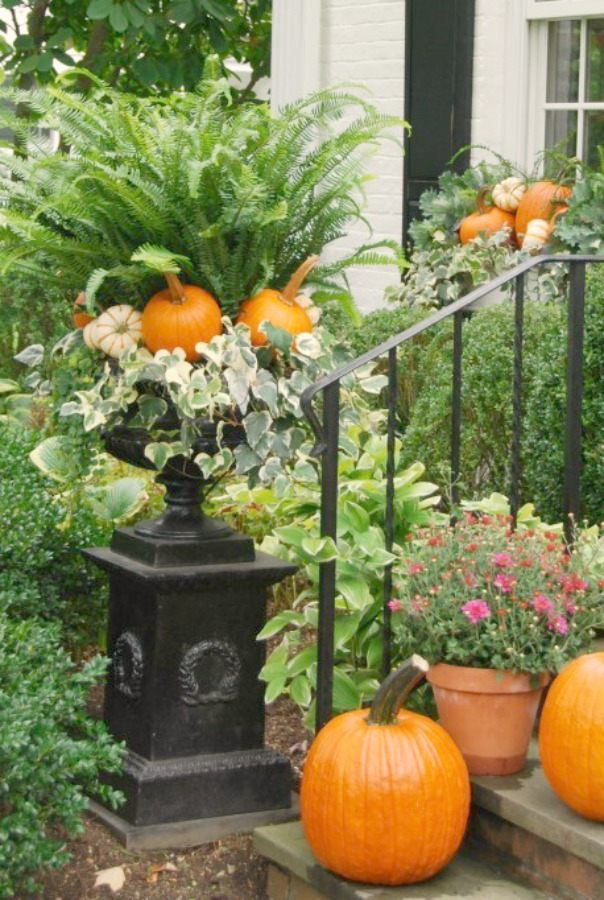 Autumn pumpkins and front porch decor with ferns and mums. Photo: Elizabeth of PPT. #fall #outdoordecor #frontporch #pumpkins #ferns