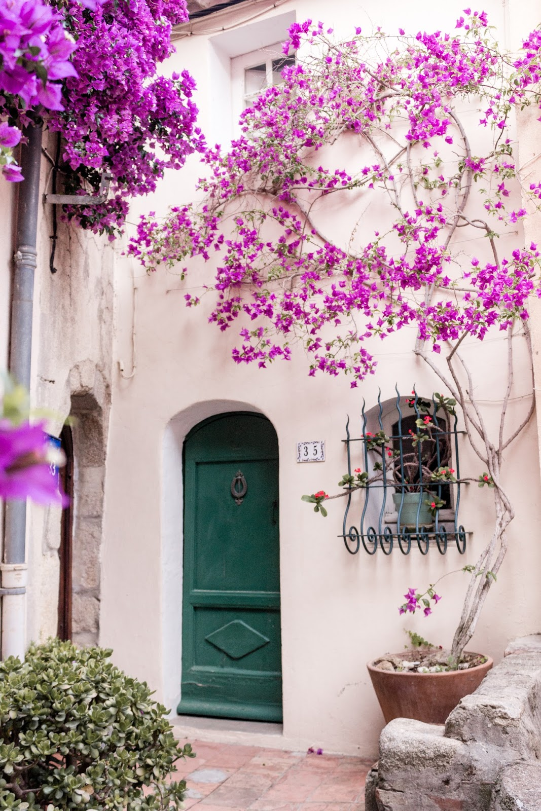 French country exterior with bold pink climbing vines and arched teal door. Photo: The Flying Dutchwoman. #frenchcountry #exterior #stucco #archeddoor #fuschia #brightpink #southoffrance #provence