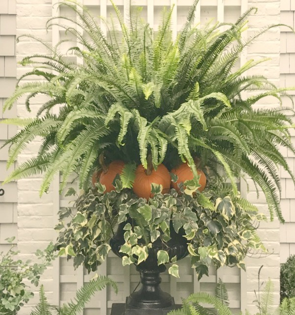 Classic fall topiary created with fern, pumpkin, and ivy. #fall #outdoordecor #planter