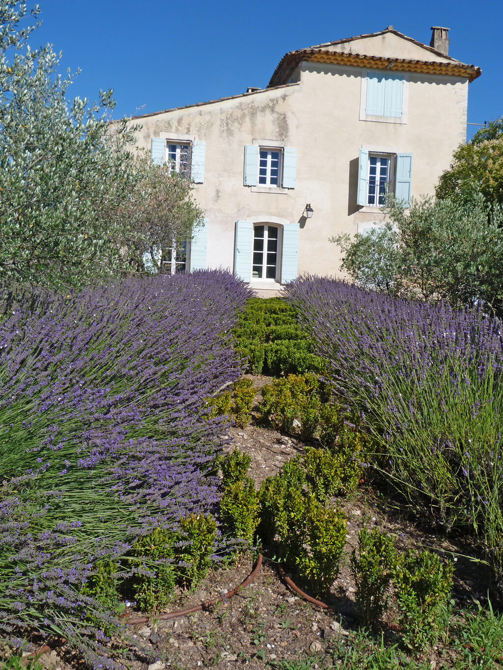 Beautiful French country house in Provence. Come tour Provence Villa St-Saturnin: Timeless & Tranquil Design...the interiors have authentic and classic French style and this luxury vacation rental can be booked through Haven In. #frenchcountry #houseinfrance #bastide #frenchfarmhouse #housetour #provence #provencal #havenin #europeancountry