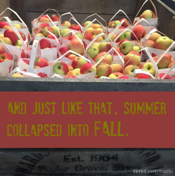 AND JUST LIKE THAT, SUMMER COLLAPSED INTO FALL. Hello Lovely Studio. #hellolovelystudio #apples #fall #quote #fallsaying #autumn