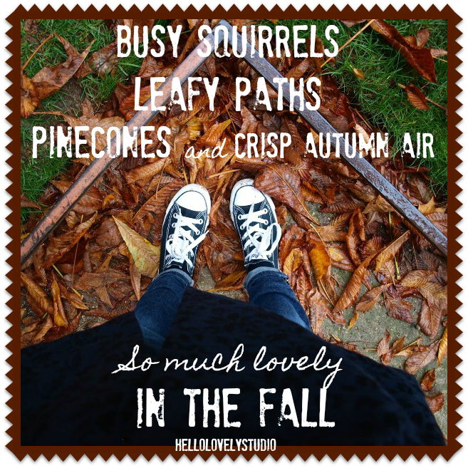 BUSY SQUIRRELS, LEFY PATHS, PINESONES AND CRISP AUTUMN AIR, SO MUCH LOVELY IN THE FALL. Photo, quote & design: Hello Lovely Studio. #hellolovelystudio #autumn #quote #fallquote #fallsaying #fallinspiration