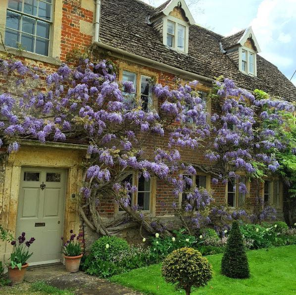 Storybook charm and lovely English countryside inspiration describe this lovely cottage exterior and gardens. The Beach Studios. Atlanta Bartlett. #Englishcottage #houseexterior #curbappeal #countryhouse #wisteria #rustic #Europeancountry #Englishcountry #cottagestyle