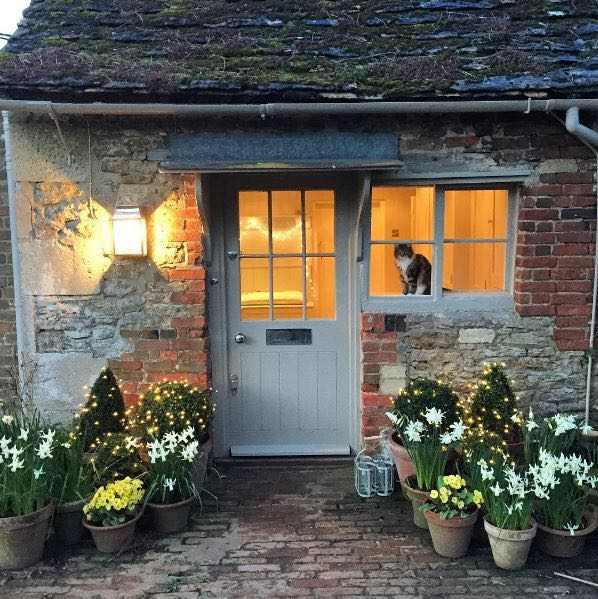 Charming English cottage with Maine Coon cat in window and potted blooms flanking a lovely door with awning. The Beach Studios. Atlanta Bartlett & Dave Coote.