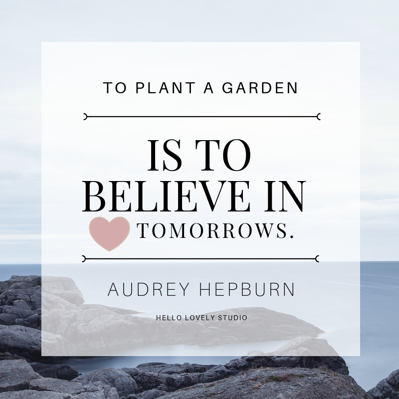 Audrey Hepburn quote about optimism and hope. TO PLANT A GARDEN IS TO BELIEVE IN TOMORROWS. #hellolovelystudio #quote #AudreyHepburn #inspiration #hope #optimism #encouragement