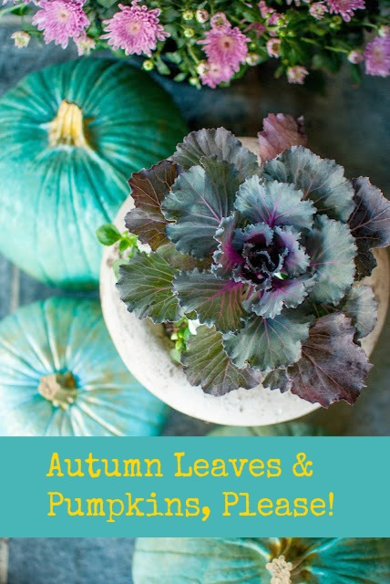Blue Cinderella pumpkins and ornamental kale in a fall decor vignette by Gwen Moss.