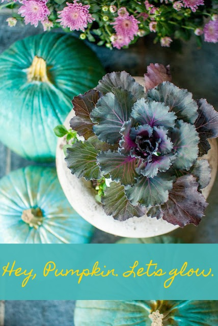 A fall quote to make you smile and inspire your autumn wonder. Photo with blue Cinderella pumpkins, kale, and mums: Gwen Moss. Hey, Pumpkin, Let's Glow. #hellolovelystudio #fall #quote #inspiration #bluepumpkins #cindereallapumpkin #gwenmoss #kale #autumnwonder #falldecor #turquoise