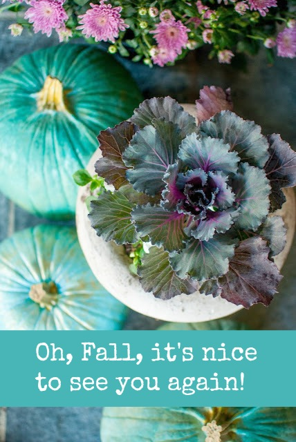 Best fall quotes to inspire. Photo: Gwen Moss. Oh, fall, it's nice to see you again. #hellolovelystudio #quote #fall #fallinspiration #kale #bluepumpkings #autumn #gwenmoss