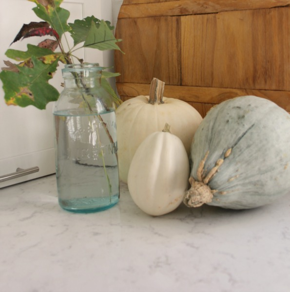 White pumpkins and gourds on my kitchen counter in fall for a pastel vignette that expresses the softer side of autumn. #falldecor #pumpkins #autumninspiration #fallkitchen