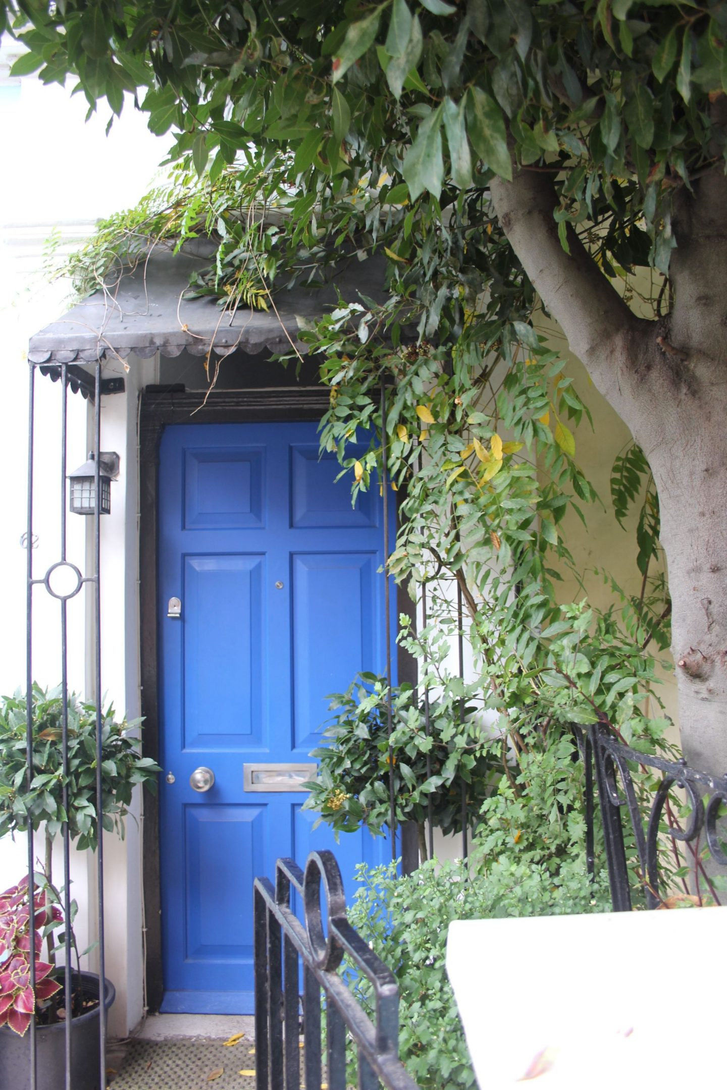 Bright periwinkle blue door at a Notting Hill home. Hello Lovely Studio. Come tour these gorgeous front doors in Notting Hill and Holland Park...certainly lovely indeed. Curb appeal and Paint Color Inspiration. Lovely London Doors & Paint Color Ideas!