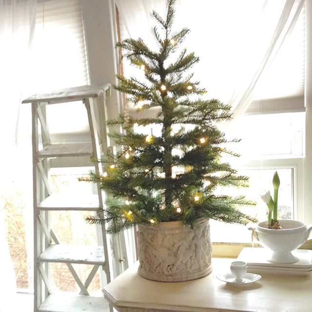 Tabletop Christmas tree with white lights in a gorgeous antique white planter. My Petite Maison. #christmasdecor #nordicfrench #whitechristmas #simplechristmas #swedishchristmas #ironstone