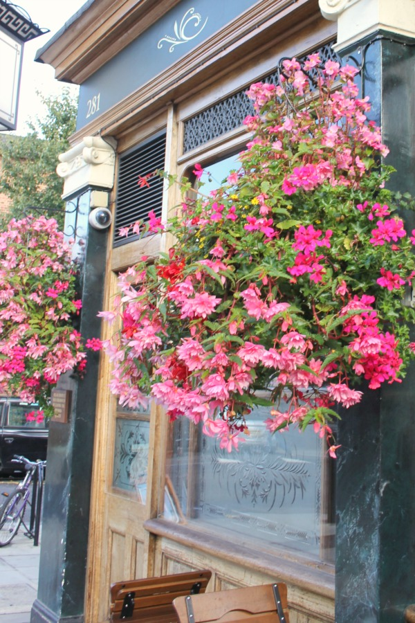 Hello Lovely Studio. Gorgeous pink flowers in baskets at a pub in Notting HIll.