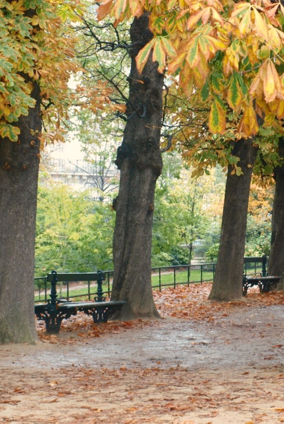 Paris in the fall with fallen leaves, a green bench, and an enchanting park captured by Hello Lovely Studio.