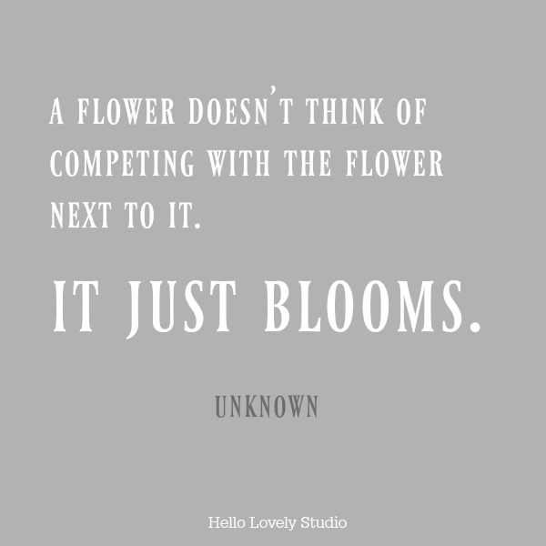 Beautiful inspirational quote about flowers and comparison on Hello Lovely Studio. #quotes #inspirationalquote #flowerquote
