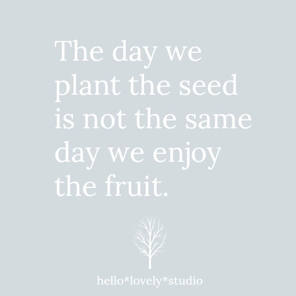 Inspirational quote to encourage by Hello Lovely Studio. #quote #inspiration #simplicity