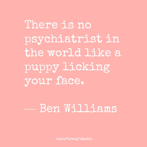 Funny dog quotes! There is no psychiatrist in the world like a puppy licking your face. Ben Williams. #dogs #funnyquote #humor