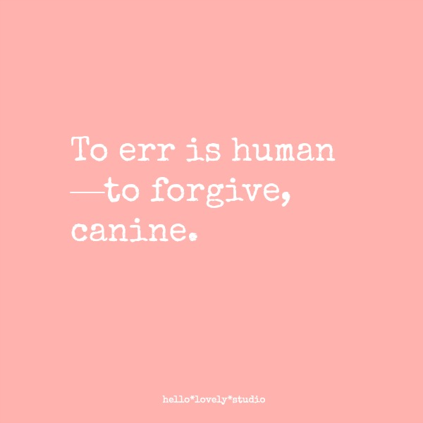 To err is human--to forgive, canine. #dogs #funnyquote #humor