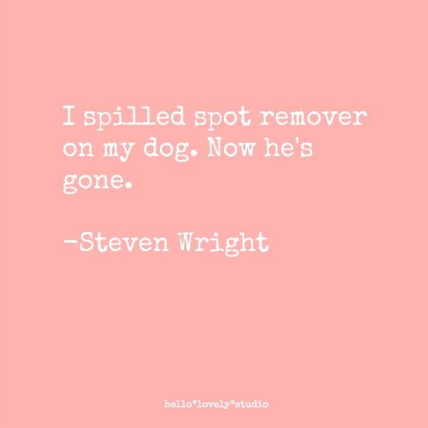 Funny dog quote by Steven Wright: I spilled spot remover on my dog. Now he's gone. #funnyquote #dogs #humor