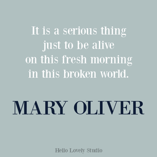 Mary Oliver quote and poetry on Hello Lovely Studio. #maryoliver #encouragementquote #inspirationalquote
