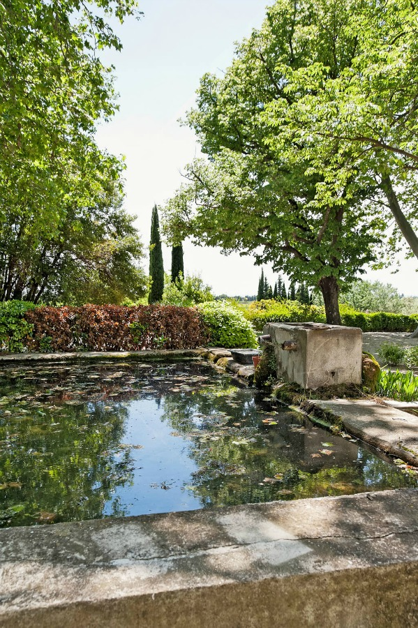 Cypress trees, a vineyard, and a pool. Provence dreams are made of these! Come tour French Farmhouse Design: Provence Villa Photos in a story with rustic decor, Country French charm, and South of France beauty! #frenchfarmhouse #interiordesign #housetour #frenchcountry #provence