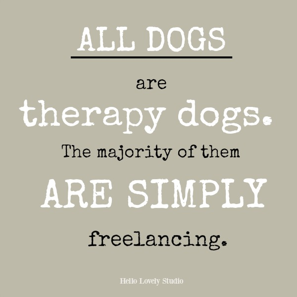 Inspirational quote about dogs on Hello Lovely Studio: All dogs are therapy dogs...the majority of them are simply freelancing.