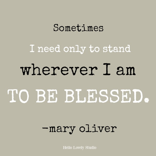 Mary Oliver inspirational quote: Sometimes I need only to stand wherever I am to be blessed. #inspirationalquote #maryoliver #hellolovelystudio
