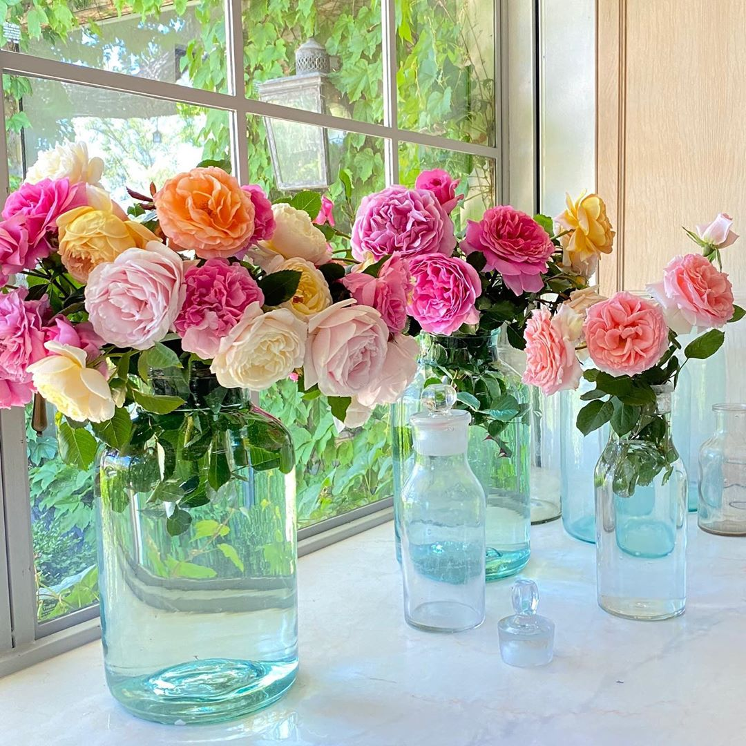 Gorgeous David Austin roses in vintage glass bottle vases at Patina Farm - Brooke Giannetti. #davidaustin #roses #farmhouseflowers #patinafarm #velvetandlinen