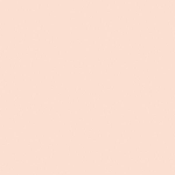 Farrow & Ball Pink Ground paint color.