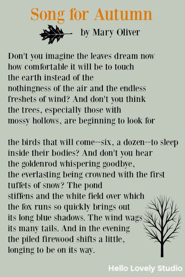 Poem by Mary Oliver about autumn. Song of Autumn.