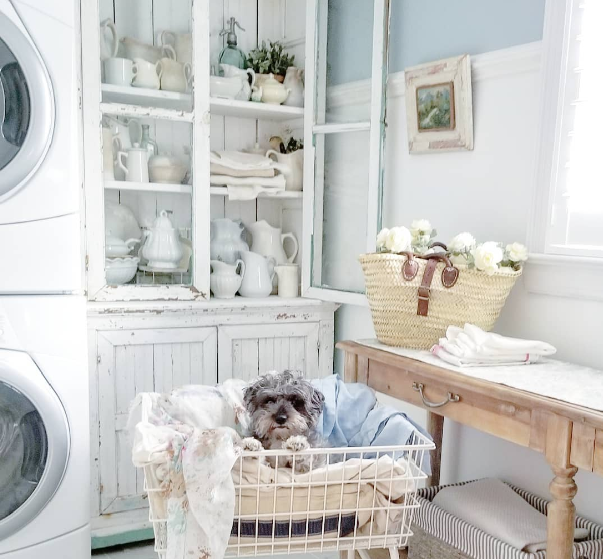 Vintage style beautiful laundry room by Pancake Hill with a sweet schnauzer in the laundry basket! Come enjoy Traditional Laundry Room and Mud Room Design Ideas, Resources, and Humor Quotes!