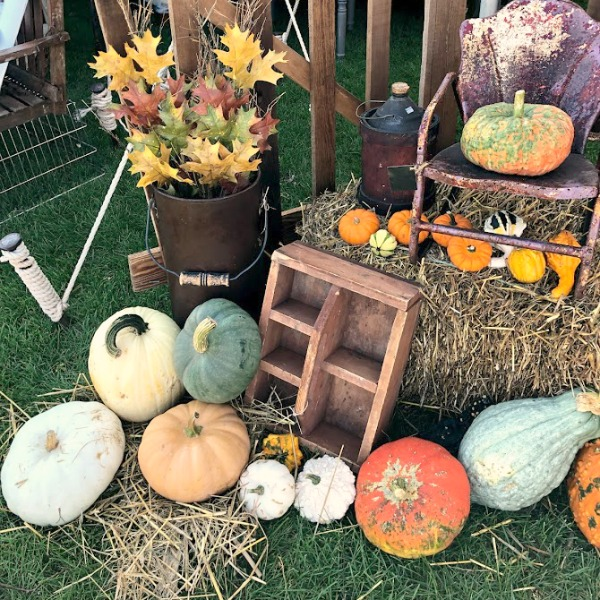 Colorful pumpkins and rustic farmhouse charm welcome autumn! CLICK OVER to say HELLO LOVELY to Pretty Pumpkin Decor and Recipes [in case you're ready to FALL in Love With Autumn].